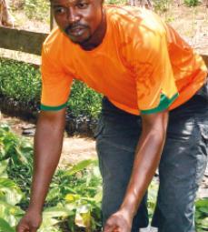 Total Pierre Mbono planteur