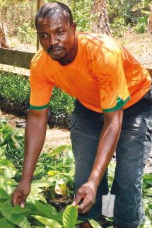 Total Pierre Mbono, planteur