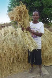 Total Madagascar : Aider les familles rurales à améliorer durablement leur bien-être